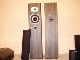 Nice Looking, Great Sounding Front speakers....